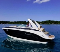 Crownline 264 CR Geratetrager
